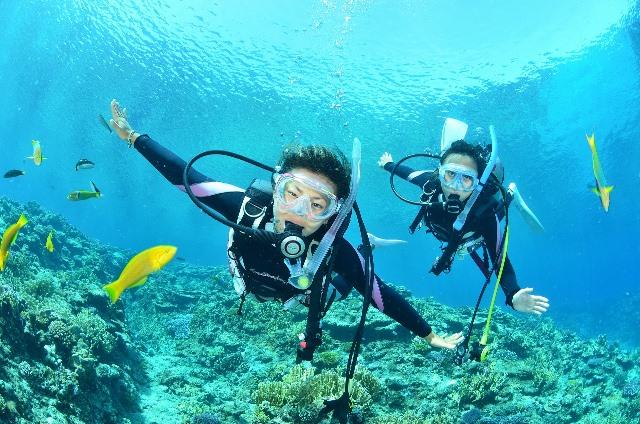 Погружение в воду, пробное занятие для одного или двоих и полный курс обучения от Submarine Club со скидкой 42%!